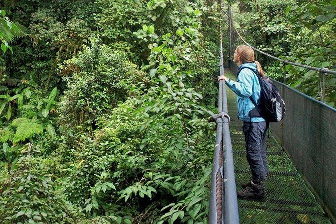 Sky Walk Tour with Hanging Bridges and Nature Preserve