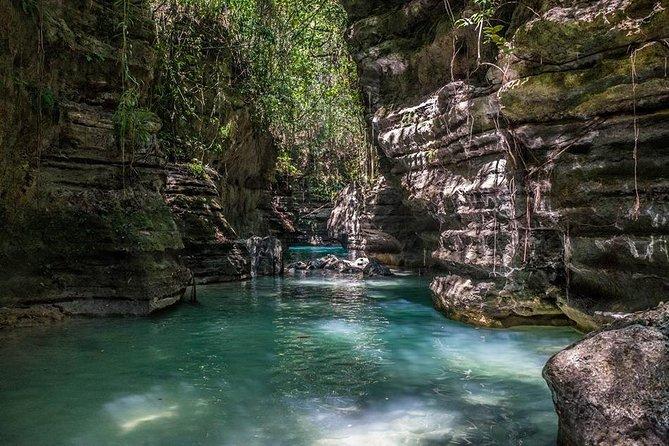 Kawasan Falls y Canyoneering