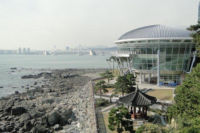 Busan City Tour Including Haedong Yonggungsa Temple And APEC House