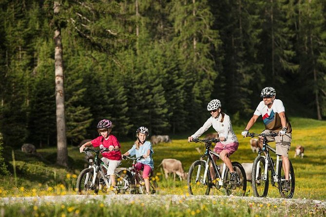 Guided Bike Tour to Mount Postavaru from Brasov