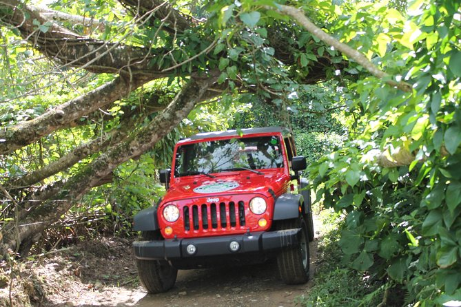 Super Jeep Expedition Tour photo 1