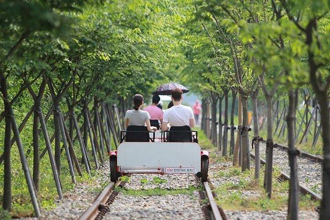Day Trip to Nami Island and Railbike Tour from Seoul