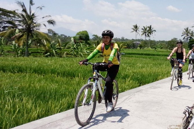 Bali Mountains and Villages Cycling Tour