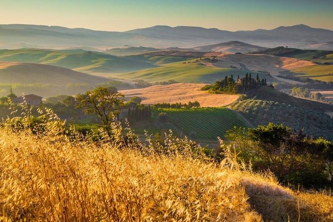 Montalcino and Montepulciano Tour from Florence