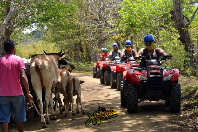 ATV CANOPY Tour in the Papagayo Gulf