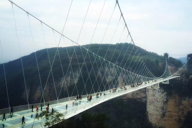 Join-in Tour: Day Tour to Zhangjiajie Grand Canyon & Glass Bridge
