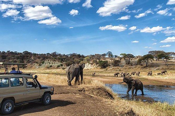 3 Day Private camping Safari in Serengeti National Park