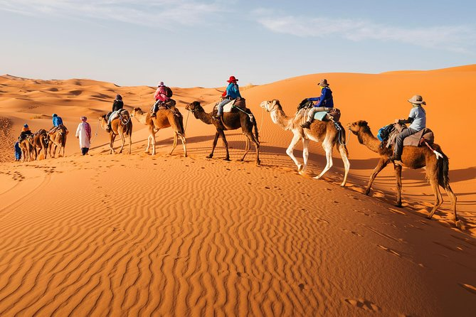 Shared 3 Days Marrakech Desert Tour To Merzouga With Luxury Accommodations