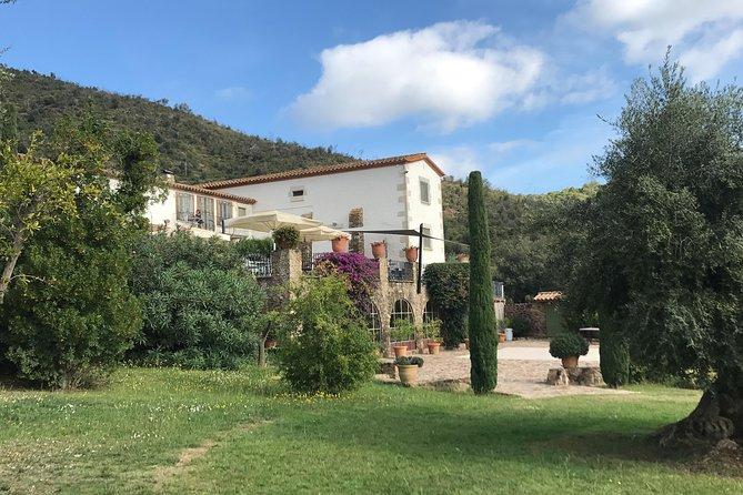 Private Gastronomic Tour around the Empordà