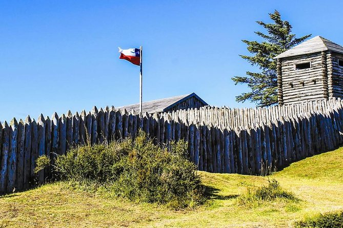 Full-Day Punta Arenas and Magellan Strait Tour
