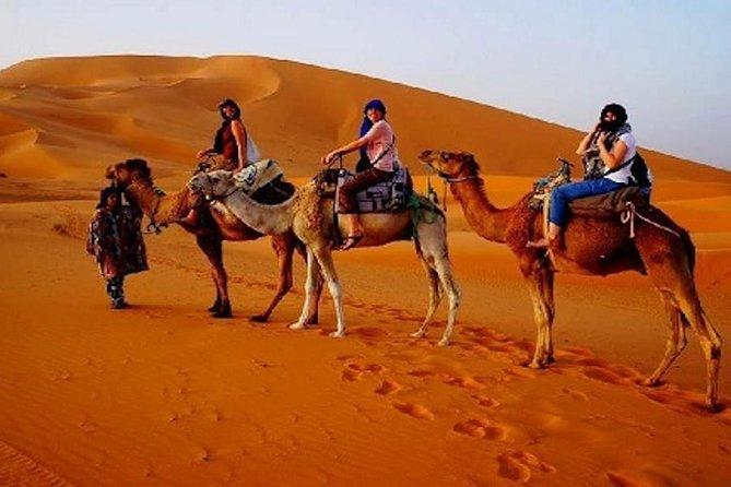 Desert Tour From Essaouira 4 Days and 3 Nights