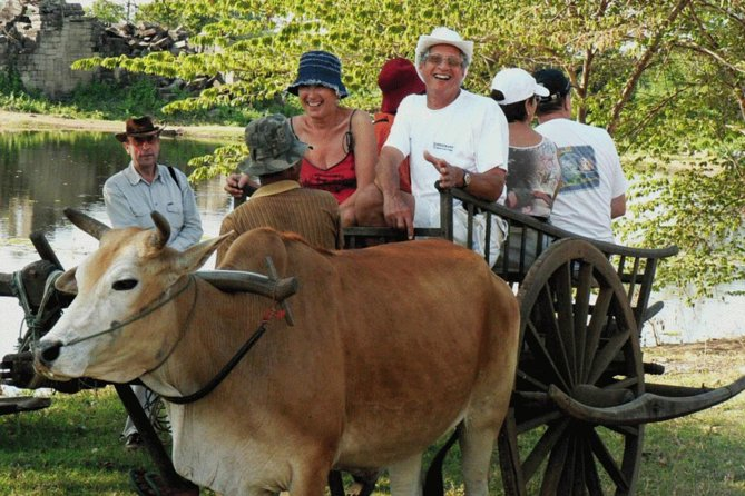 Half-Day Ox Cart and Floating Villages Tour