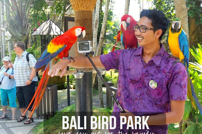 Amazing Private Full Day Trip-Bali Bird Park And Yeh Pulu Temple Include Lunch
