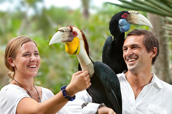 Amazing Private Tours-Bali Bird Park And Tanah Lot Temple Include Lunch