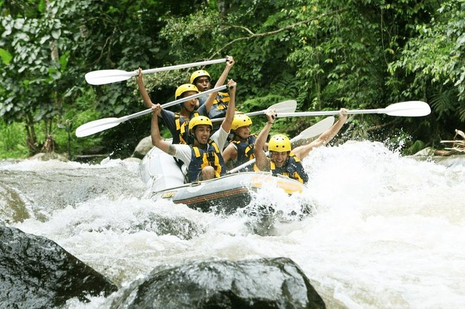 The Best 5 Star Mason Adventure Morning Rafting-Lunch-Ubud Palace & Ubud Market