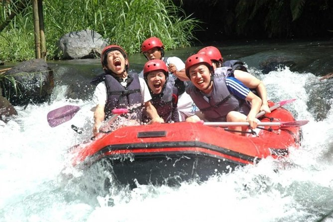 Best Private Tour-5 Star Mason Adventure Rafting-Lunch And Goa Gajah Temple