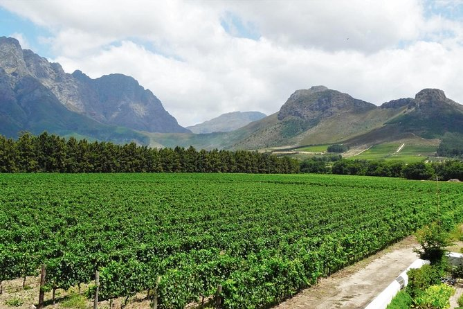 Franschhoek Winelands Guided Wine Cycle Tour