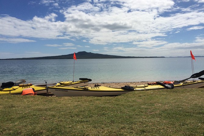 Half-Day Auckland North Head Guided Kayaking Tour photo 6