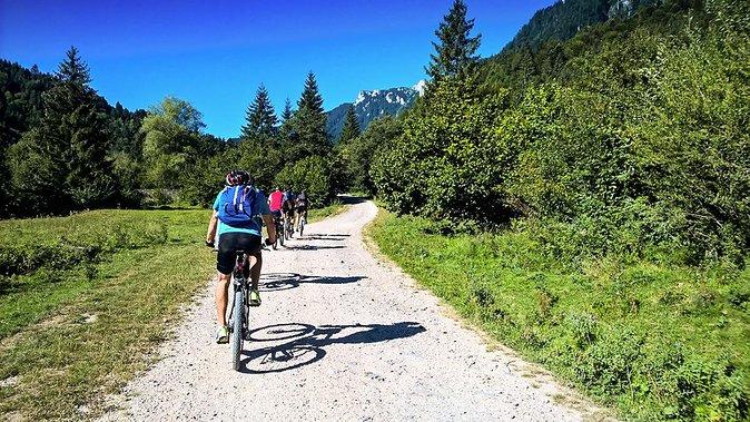 Mountain bike tour & wine tasting