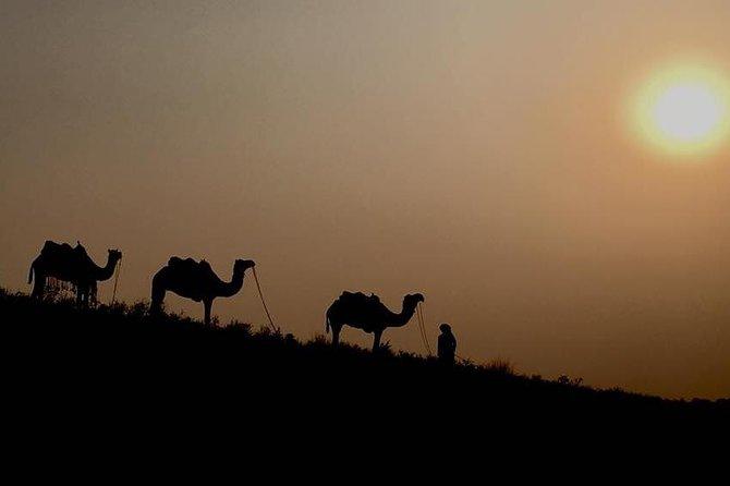 Incredible Rajasthan with Pushkar Fair