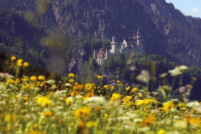Private Day Tour vanuit Fussen: kasteel Neuschwanstein, Oberammergau en kasteel Linderhof