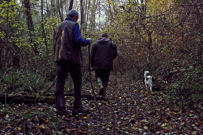Truffle Hunting in Siena countryside