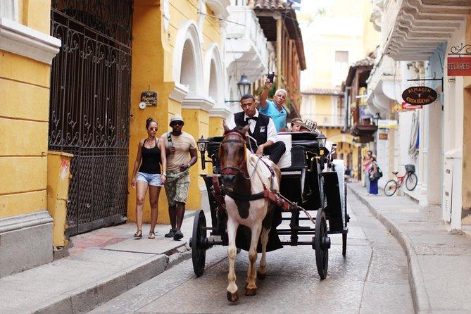 The Real Cartagena Tour