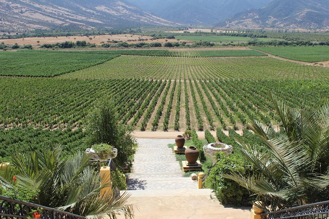 Winery & Valparaiso Private Tour - day trip from Santiago