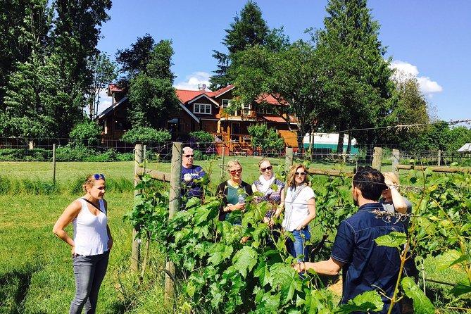 Victoria Wine Tour con degustazioni e campioni privati