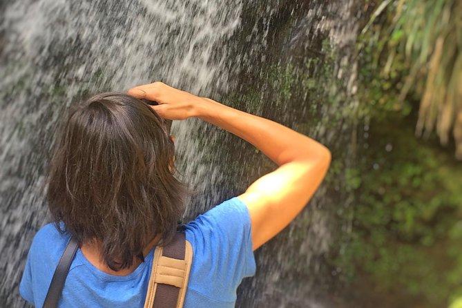 Tour privado: Grenada Photo Safari