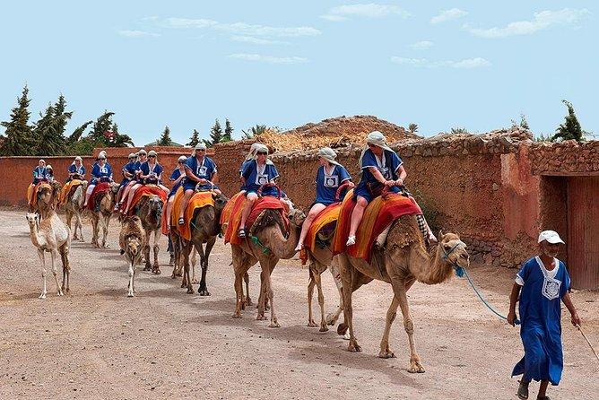 Passeio de camelo em Marraquexe