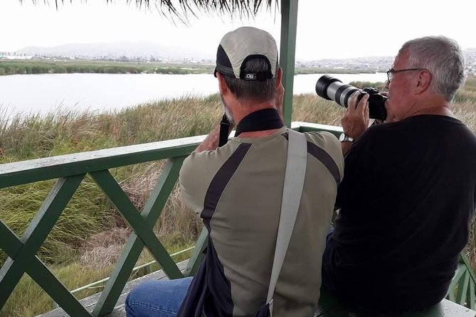 Pantanos de Villa Wildlife Refuge Tour in Lima