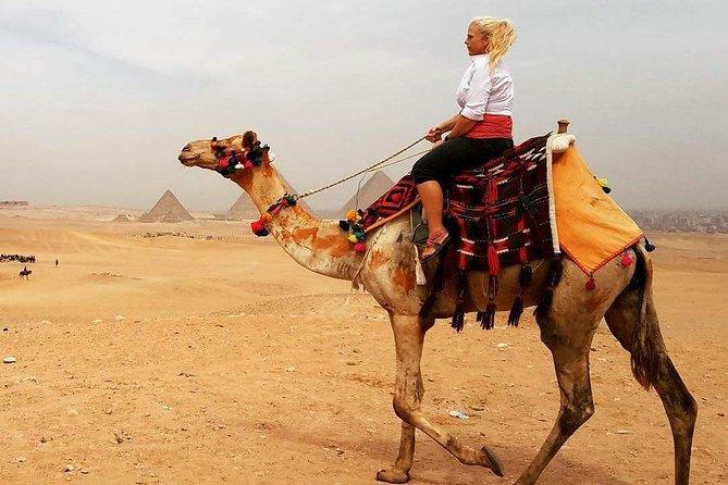 Private Safari Camel Ride around Giza pyramids