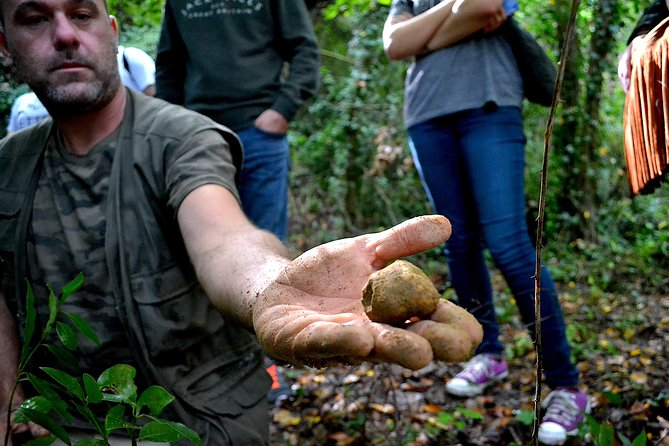 Full-Day Small-Group Truffle Hunting in Tuscany with Lunch