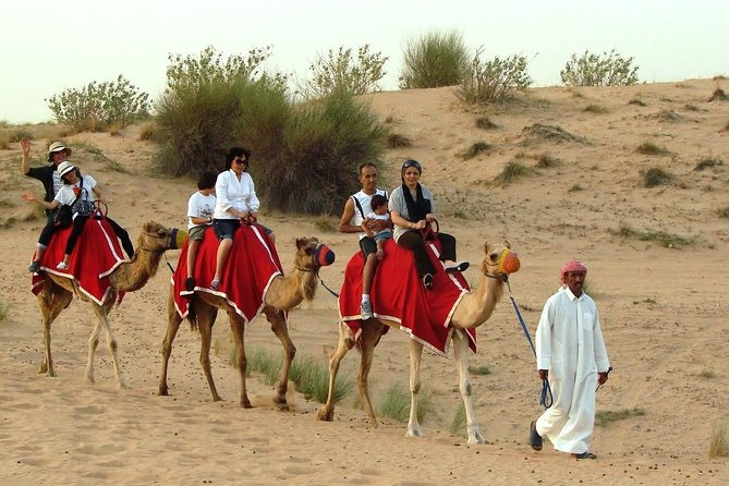 Morning Desert Safari with Sand boarding and Camel Ride photo 6
