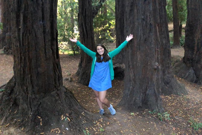 Redwoods of Marin and Mt. Tamalpais Walking Tour with Local Guide photo 16