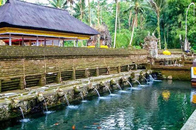 Best of Bali in One Day Trip