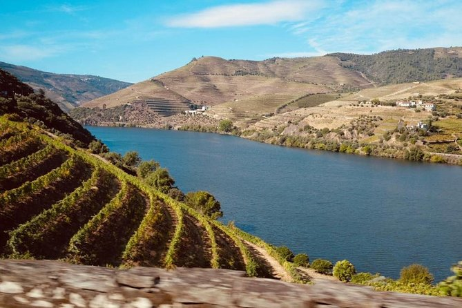 From Porto: Amazing Douro with Lunch Included photo 1