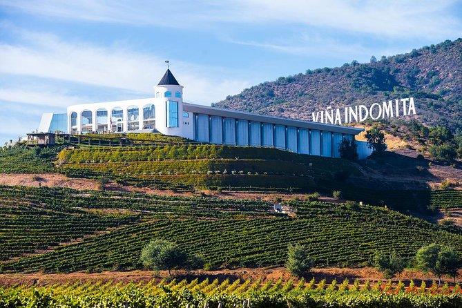 Wine Valparaiso and Viña del Mar