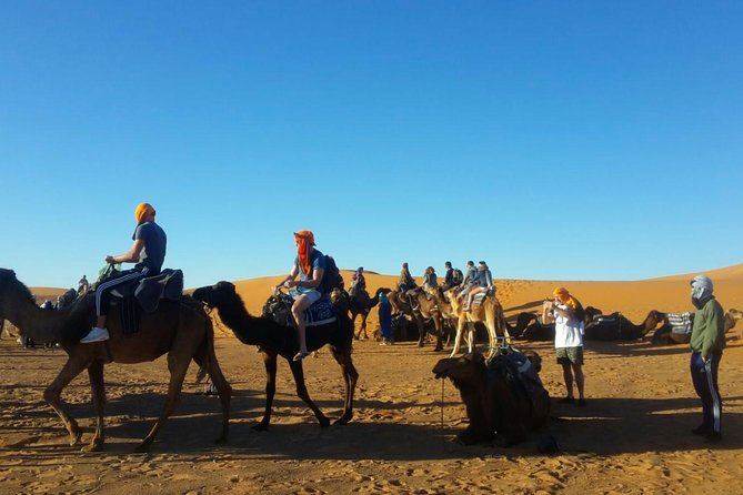 2 day shared group desert tour from Marrakech photo 1