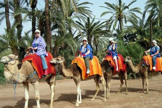 Sunset Camel Ride In Marrakeh Palm Grove photo 2