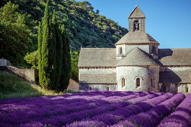 Lavender Beauty Small Group Half Day Tour from Avignon