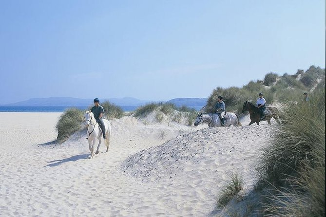 Private beach horse riding on the Wild Atlantic Way Connemara. Guided. Full day.