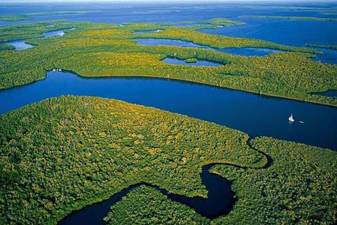 Private 4-Hour Exciting Everglades Tour-Other Languages on request