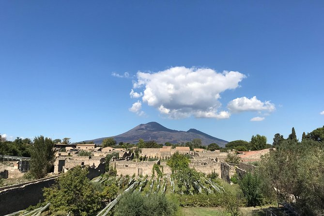 Pompeii Private Tour with your Archaeologist