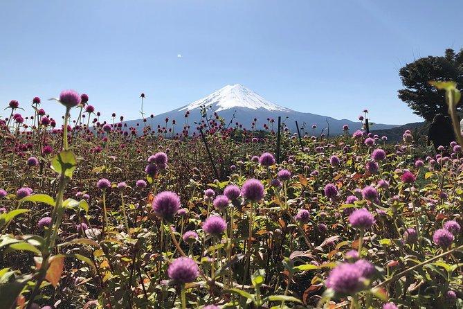 Mt Fuji Day Tour with Kawaguchiko Lake and Gotemba Outlet