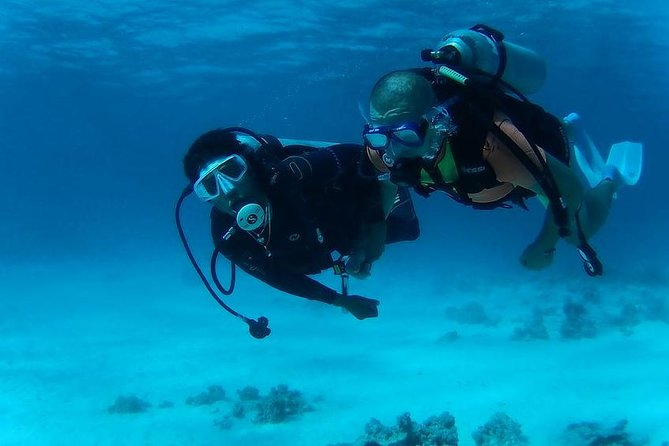 Day Scuba diving trip from Hurghada