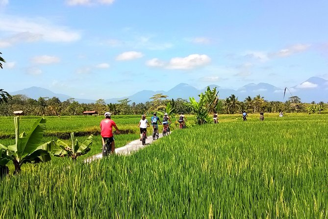 Electric Cycling Tour from Sanur to Ubud