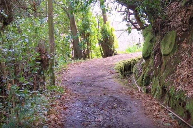 Valley de Paradise Levada Walk