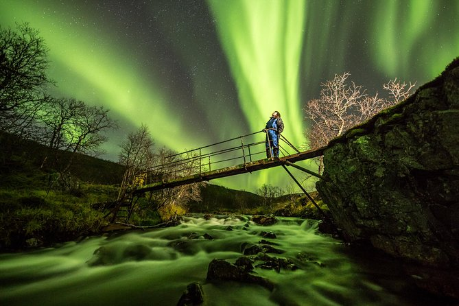 Northern Lights Adventure with Greenlander, 8 people max